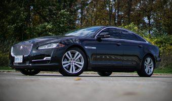 1 - Jaguar MAIN PIC